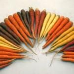 Carrot, Radicchio & Ham Salad