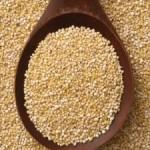 Quinoa Rhapsody